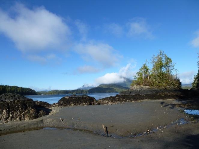A small beach near the trailhead on Morpheus Island
